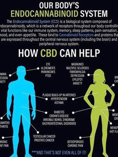 How CBD can help