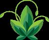 Logo Urbanholistic.png