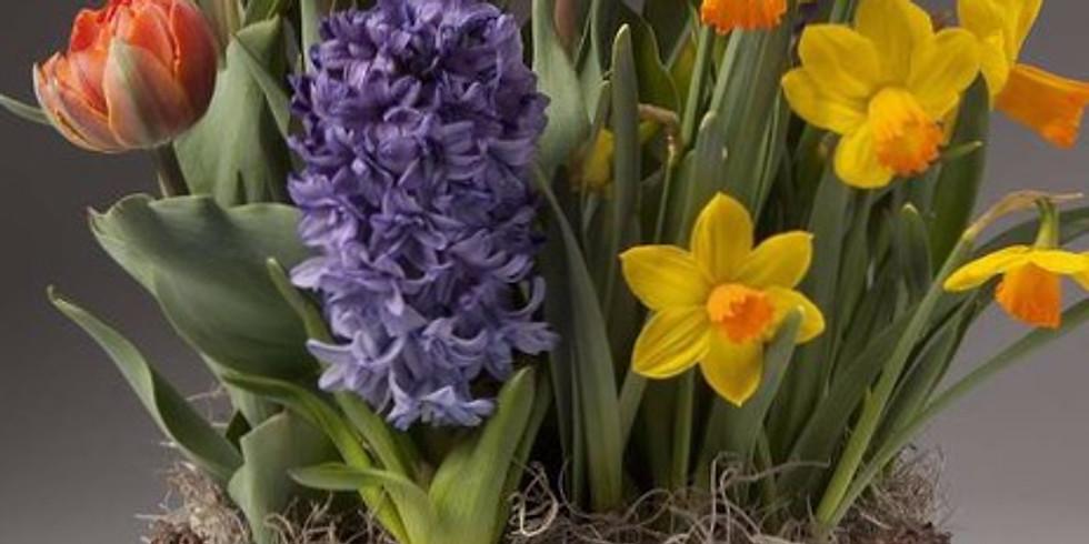 Virtual Spring Bulb Gardens!