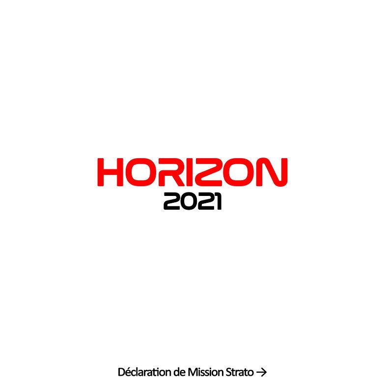 Horizon 2021 Statement0.jpg