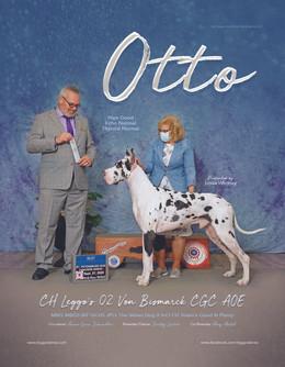 Otto ad - Oct20.jpg