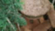 treehouse_aerial.png