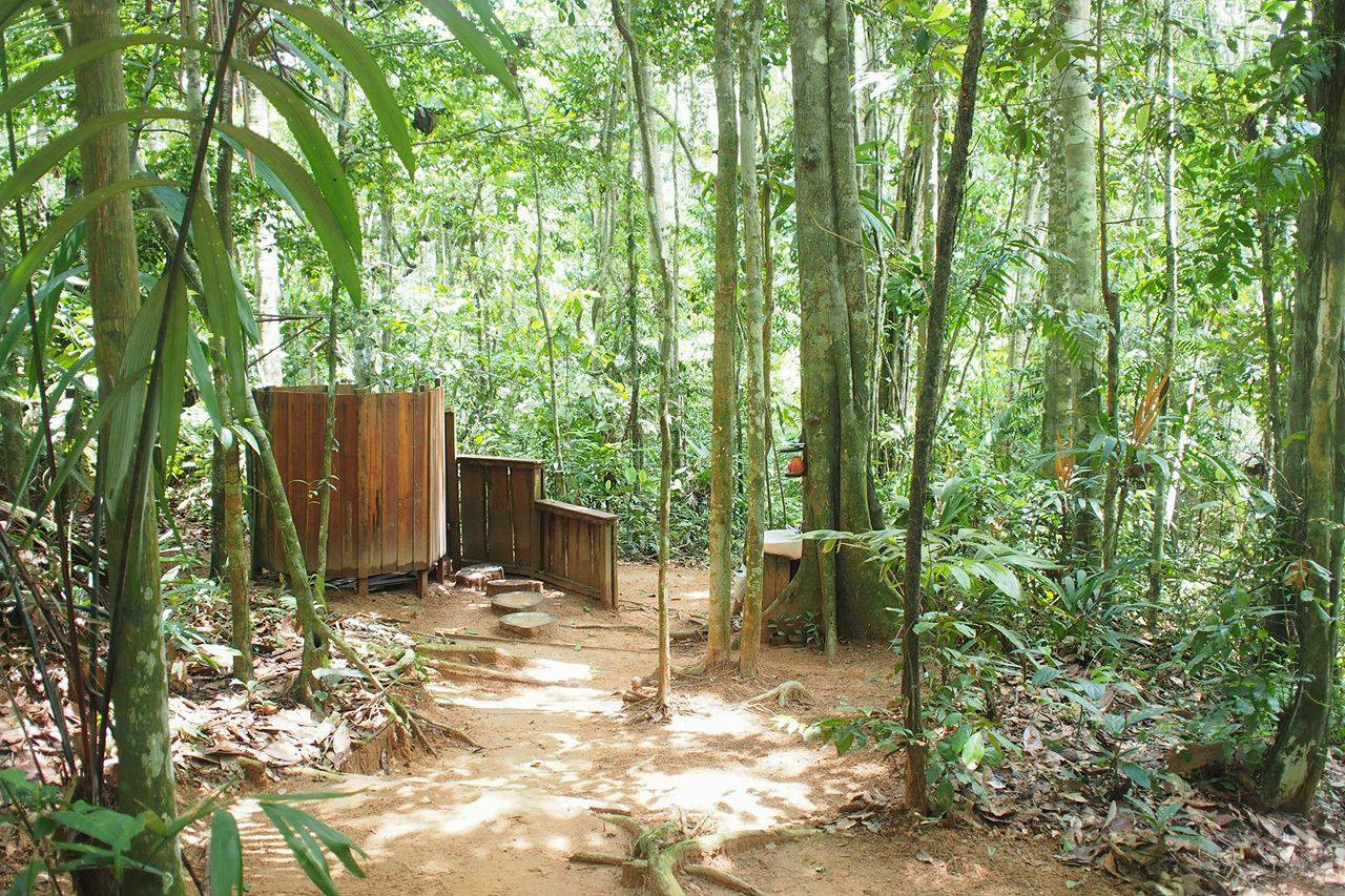 Outdoor Shower made from the trees of our forest