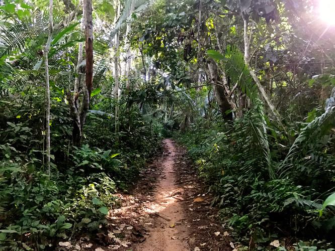 The path to Novalis