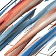 Transition_Base_A0B2_Flowfield_edited.pn