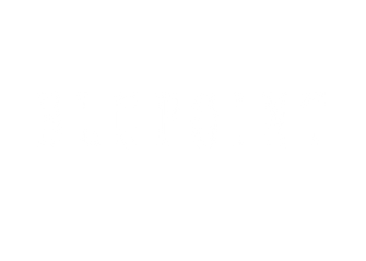 BLUPOINT-LOGO-FOR-WEB.png