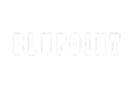 BLUPOINT-LOGO-FOR-WEB_edited.png