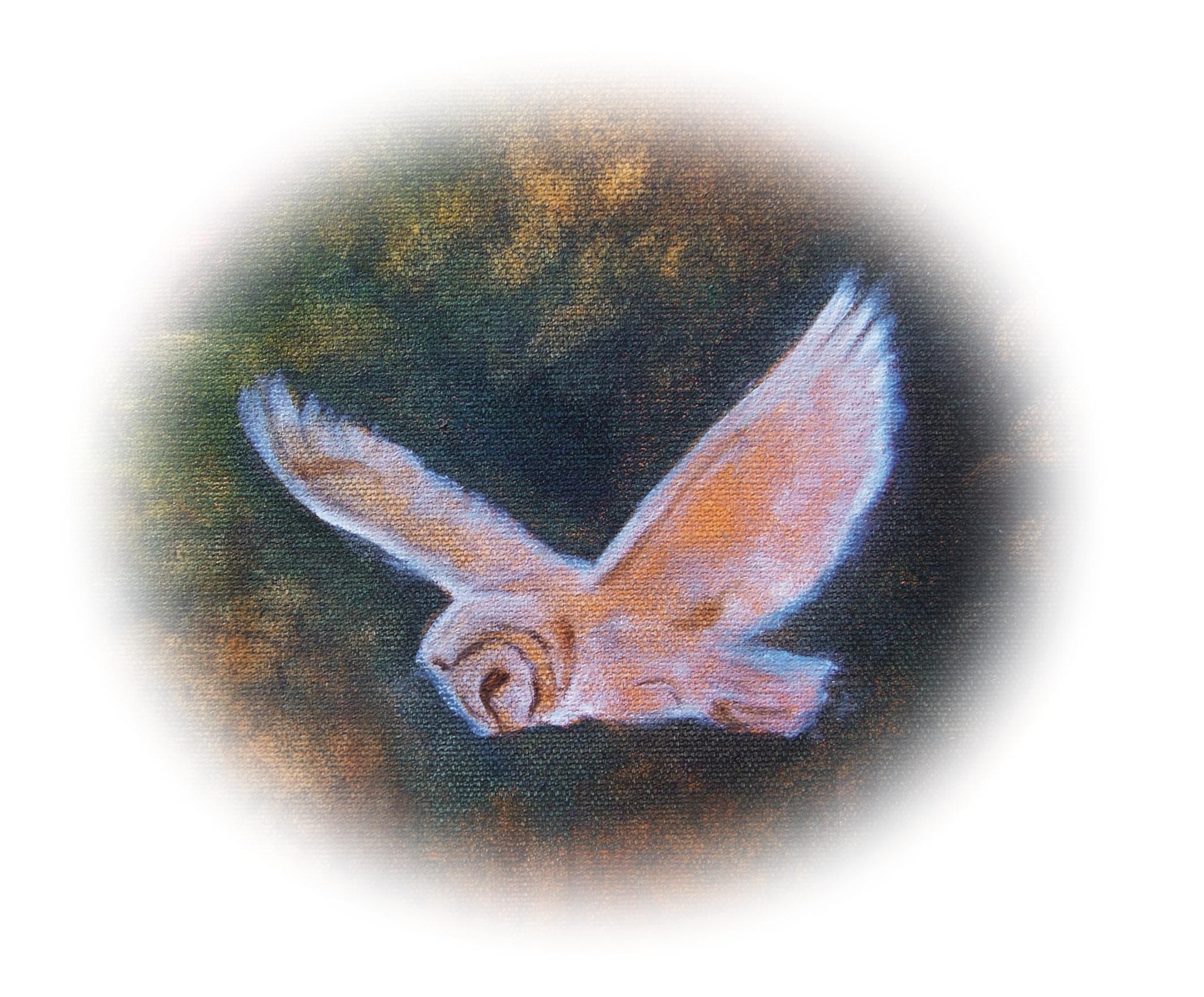 06-owl-180mmW-CMYK