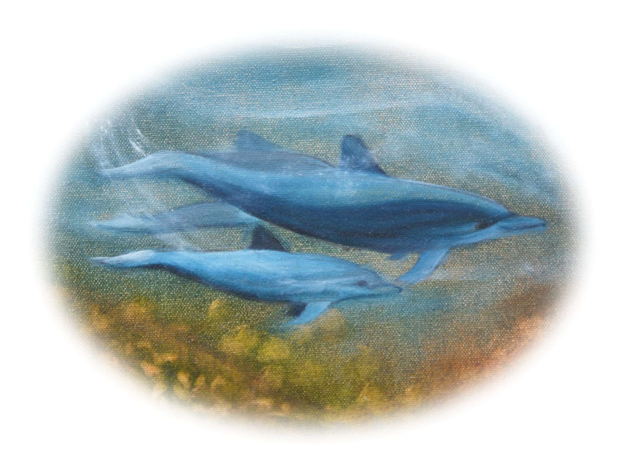 01-dolphins-180mmW-CMYK