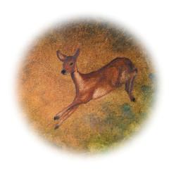 12-deer-180mmSq-CMYK