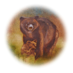 02-bears-180mmSq-CMYK