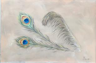 Fancy Feathers.jpg