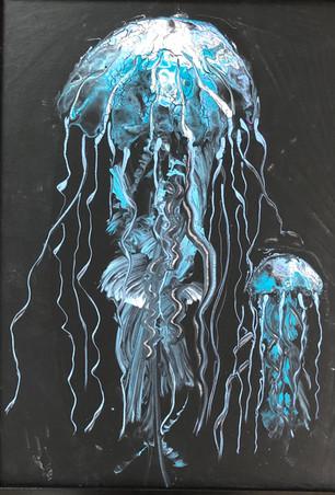 Jelly Fish.jpg