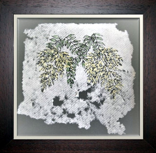 Spiraea Sorbifolia