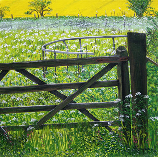 Gate And Cattle Feeder