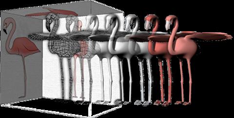 clayoo2-flamingo-3d-modeling-process.png