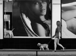 2 DOGS, 2 WOMEN