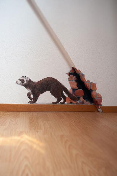 Wandbild-Marder-Chantal-Beck-okt20-03.jp