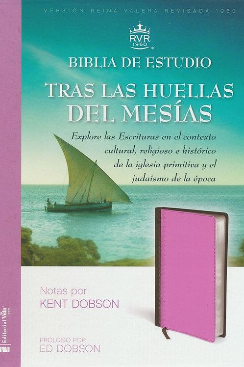 Biblia de Estudio RVR 1960 Tras Las Huellas del Mesias, Marron/Rosado