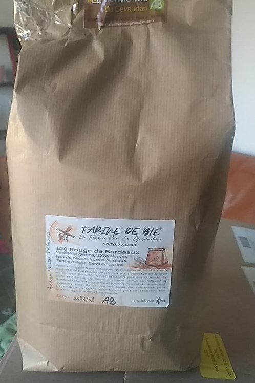 Farine de Blé rouge semi complète 4kg
