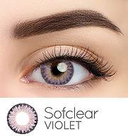 35B Violet Web 2020.jpg