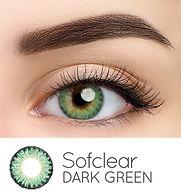 35B Dark Green Web 2020.jpg