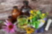 phytotherapie_savoir_transmettre_ng_imag