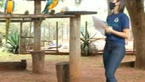 Estudante de Araguaína é selecionada para treinamento mundial sobre sustentabilidade