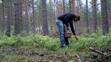 Into the Finnish Forest with Artist Antti Laitinen