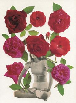 Day 27 Rose Flower
