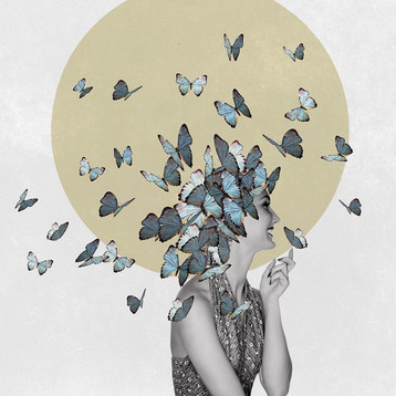 Butterfly Effect