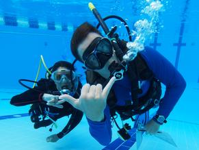 Spotlight on good diver behaviour