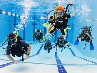 Want to learn to scuba dive but don't know where to begin?