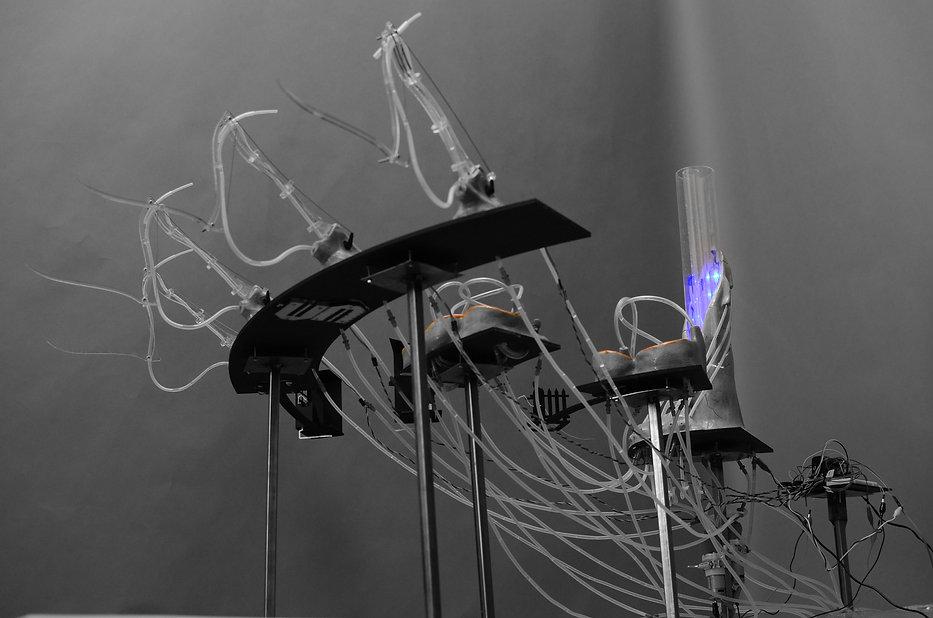 Hydrophilic grounds, Arduino prototype.  WATERSHED- Inhabitable water infrastructure. Raphael fogel