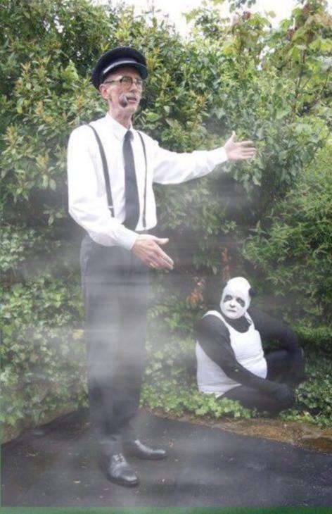 Pandas in the fog