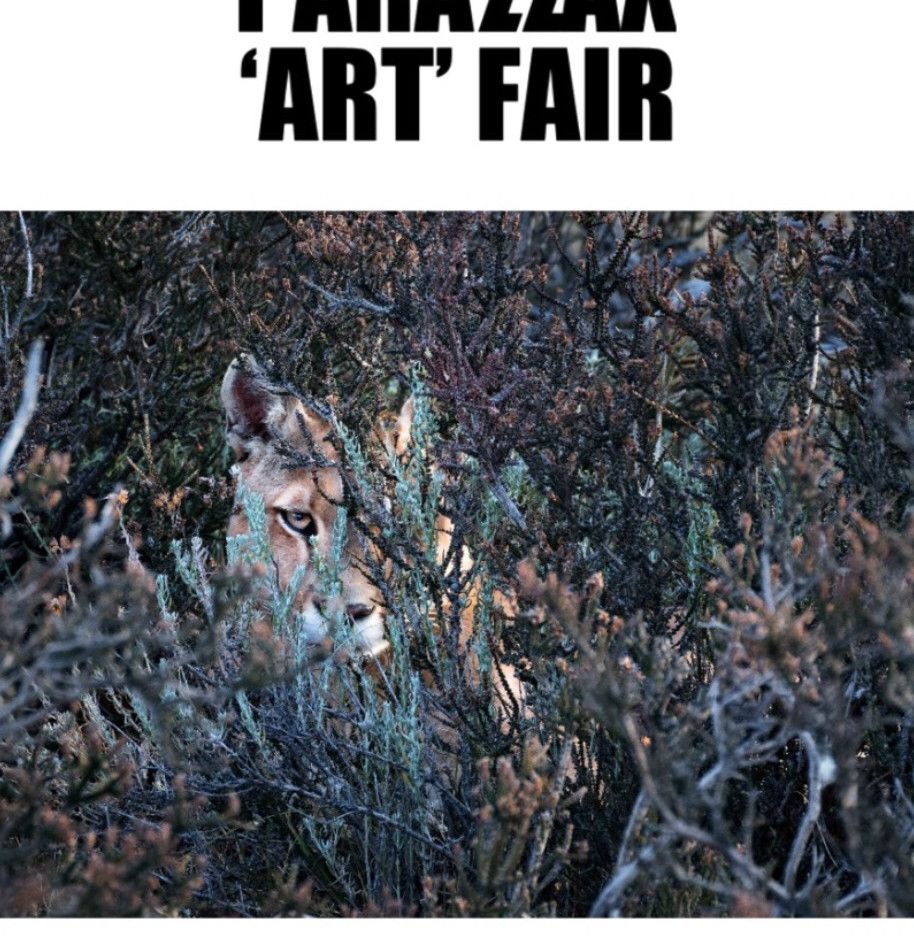 Exhibitions - Parallax Art Fair
