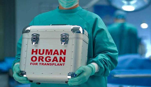 Organ-Transplantation.jpg