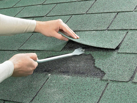 shingle-roof03.jpg