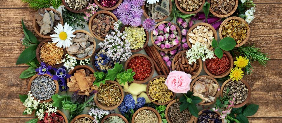 O que é naturopatia