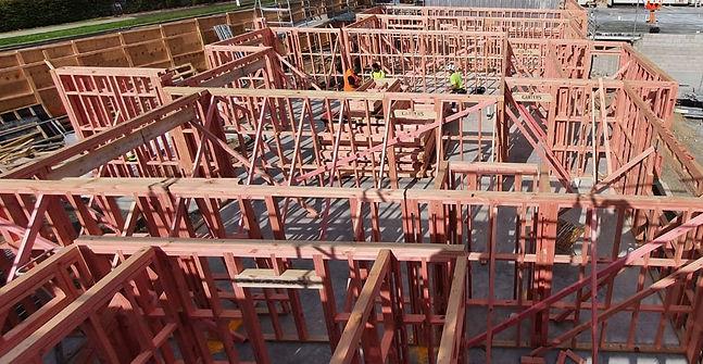 Carpentry_edited.jpg