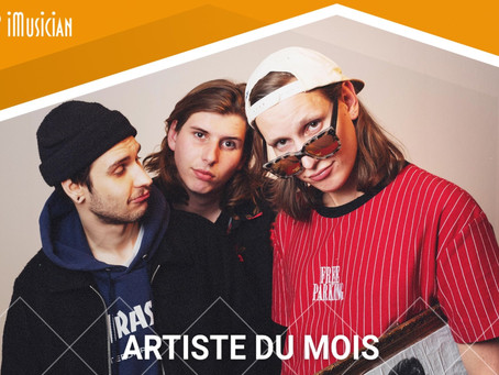 Elm Tree Circle featured as Artist of the Month on iMusician