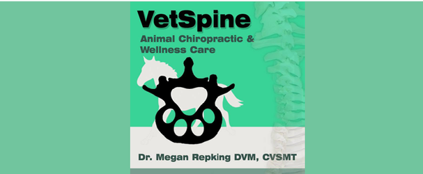 VetSpine 2.png