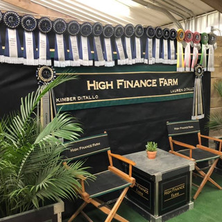 Top Placings at World Equestrian Center