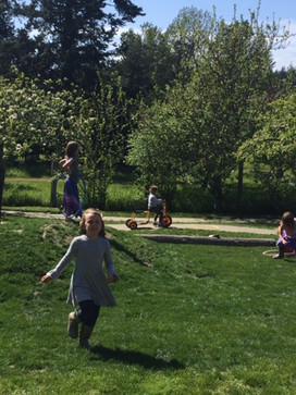 Outside play on our grassy hill