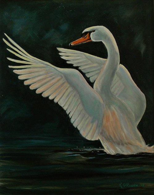 Magestic Swan    16 x 20
