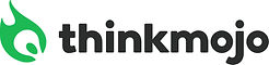 logo - Thinkmojo.jpg