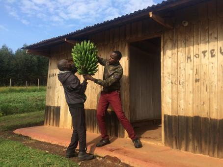 Till Mobile Helps Transform a Kenyan Farming Community