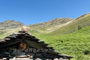 Cabane pastorale