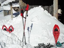 Découverte raquette à neige