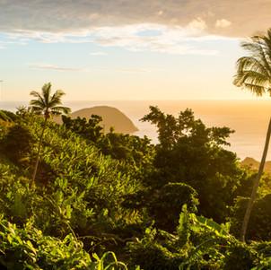 Dominica_BasvanOort-94.jpg